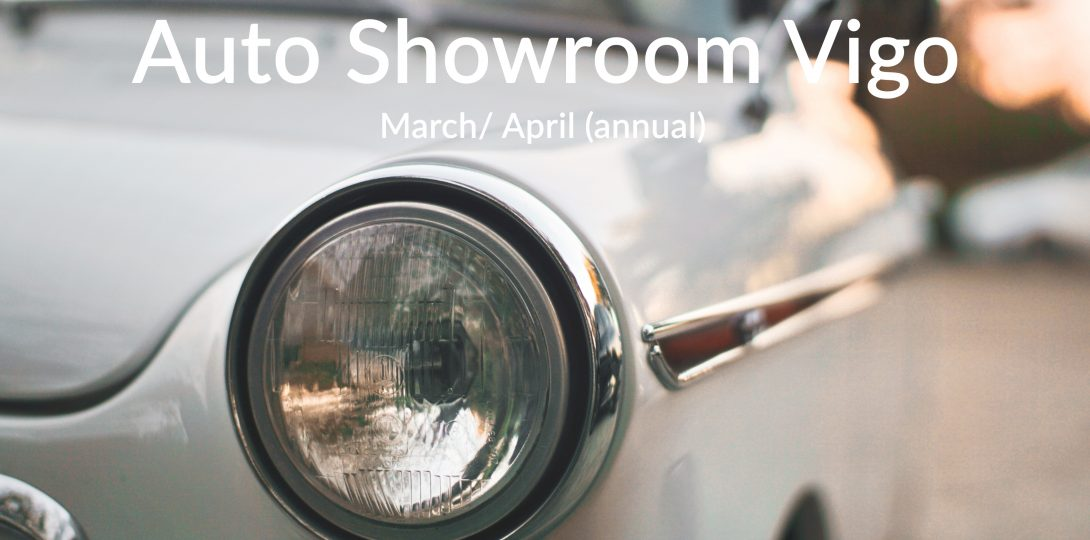 auto showroom vigo (2)